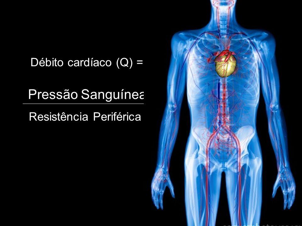 Aneurisma ALTERAÇÕES PATOLÓGICAS DO FLUXO SANGUÍNEO HEMODINÂMICA