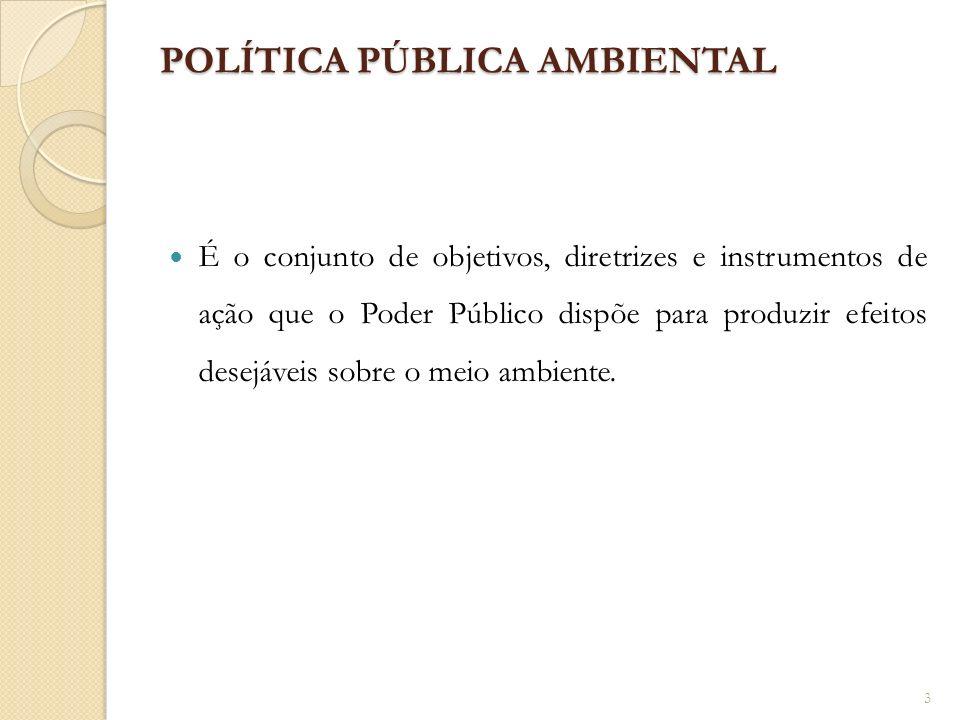 POLÍTICA PÚBLICA AMBIENTAL É o conjunto de objetivos, diretrizes e instrumentos de ação que o Poder Público dispõe para produzir efeitos desejáveis so