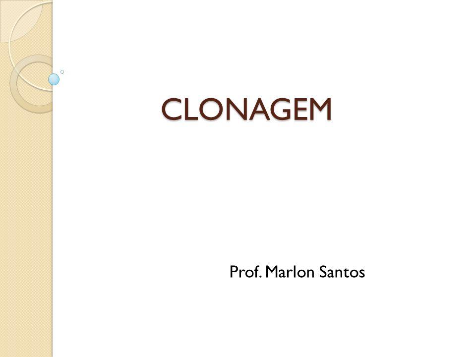 É extremamente importante que as pessoas entendam a diferença entre clonagem humana, clonagem terapêutica e terapia celular com células-tronco embrionárias ou não.