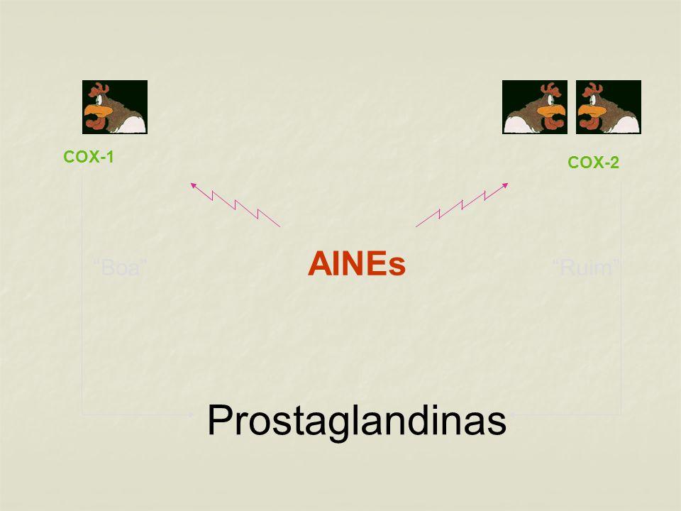 Prostaglandinas Boa AINEs Ruim COX-2 COX-1