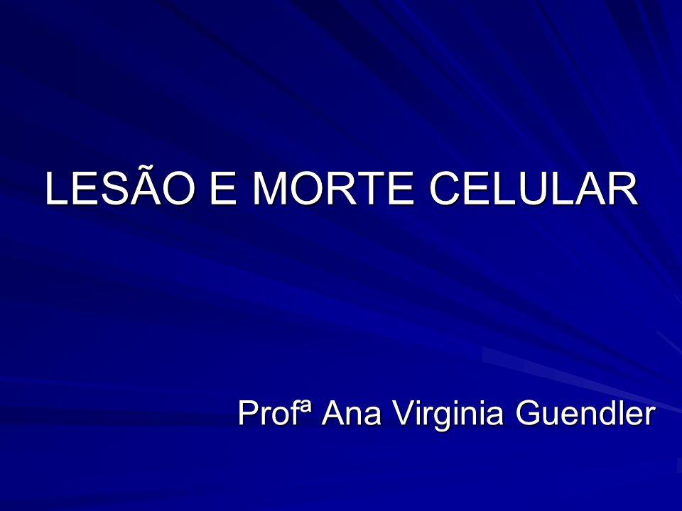 LESÃO E MORTE CELULAR Profª Ana Virginia Guendler