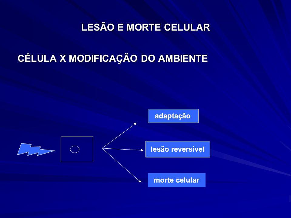 ADAPTAÇÃO ADAPTAÇÃO Capacidade da célula de se adaptar a alterações no seu meio ambiente e sobreviver em condições adversas Capacidade da célula de se adaptar a alterações no seu meio ambiente e sobreviver em condições adversas Alterações adaptativas estruturais (alteração no padrão normal de crescimento) Alterações adaptativas estruturais (alteração no padrão normal de crescimento) Alteração no tamanho da célula: Alteração no tamanho da célula: Alteração no nº de células: Alteração no nº de células: Alteração no nº de cel e na diferenciação celular Alteração no nº de cel e na diferenciação celular hipotrofia hipertrofia hipoplasiahiperplasia metaplasia