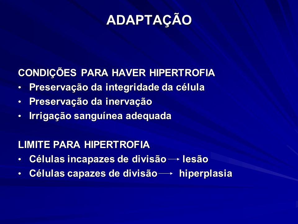ADAPTAÇÃO HIPERPLASIACaracterização Aumento no nº de células Aumento no nº de células Preservação do padrão morfo-funcional Preservação do padrão morfo-funcional Aumento da capacidade funcional Aumento da capacidade funcional Condição reversível Condição reversível Condições para haver hiperplasia Condições para haver hiperplasia = hipertrofia = hipertrofia capacidade de divisão da célula capacidade de divisão da célula
