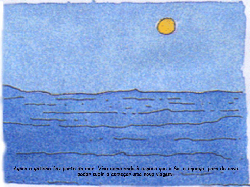Agora a gotinha faz parte do mar.
