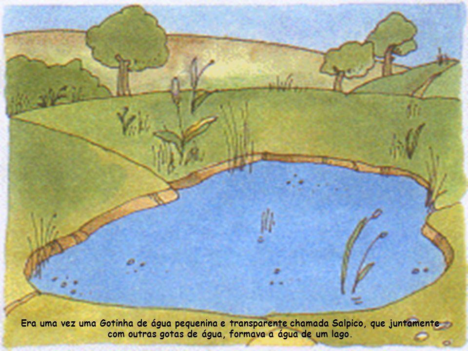 Era uma vez uma Gotinha de água pequenina e transparente chamada Salpico, que juntamente com outras gotas de água, formava a água de um lago.