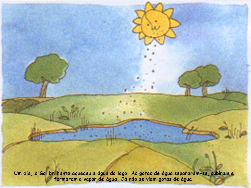 Um dia, o Sol brilhante aqueceu a água do lago.