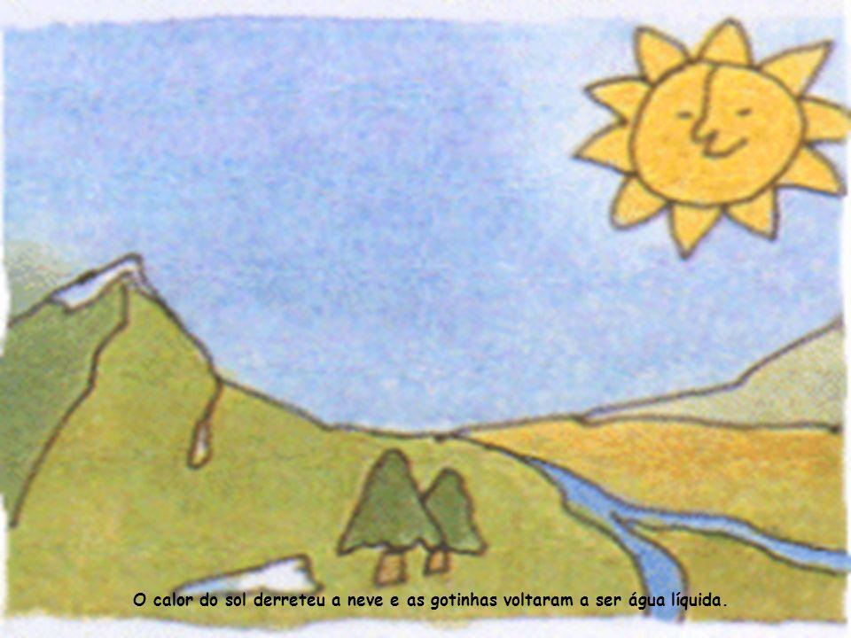 Parte da água introduziu-se na terra e alimentou as plantas.