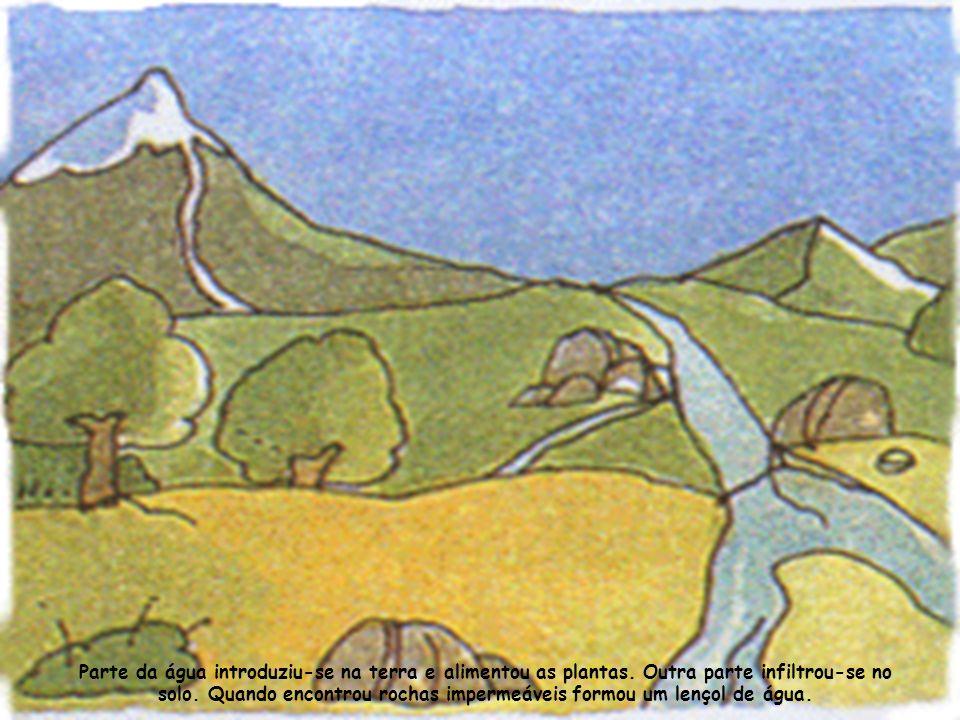 A gotinha Salpico, com outras companheiras, correu debaixo da terra e formou uma nascente.