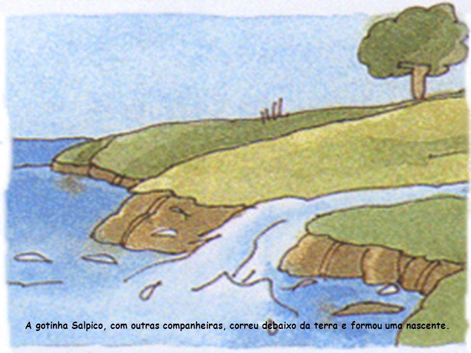 A gotinha Salpico foi ter ao rio onde conheceu os peixes.