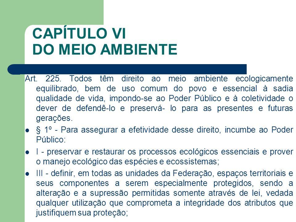 CAPÍTULO VI DO MEIO AMBIENTE Art. 225. Todos têm direito ao meio ambiente ecologicamente equilibrado, bem de uso comum do povo e essencial à sadia qua