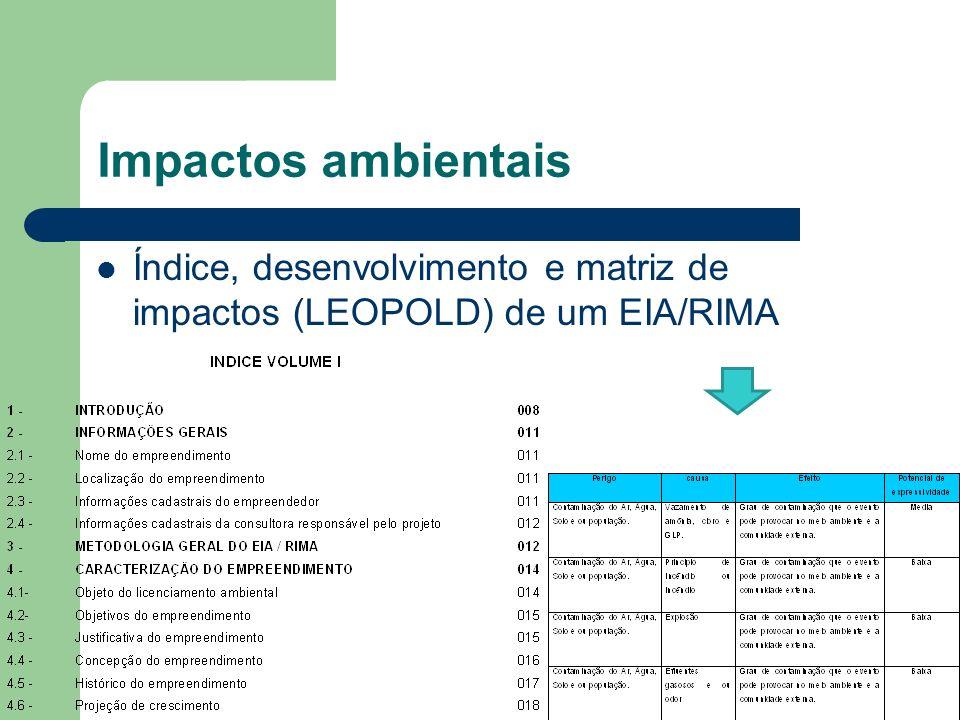 Índice, desenvolvimento e matriz de impactos (LEOPOLD) de um EIA/RIMA Impactos ambientais
