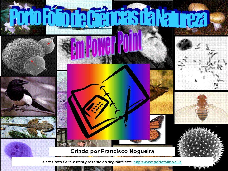 Este Porto Fólio estará presente no seguinte site: http://www.portofolio.vai.lahttp://www.portofolio.vai.la Criado por Francisco Nogueira