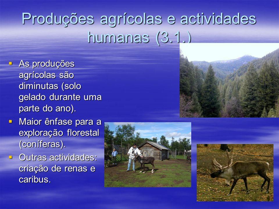 3.1. CLIMA FRIO SUBPOLAR Invernos muito rigorosos; Invernos muito rigorosos; Verões muito frescos e pluviosos; Verões muito frescos e pluviosos; Tem a