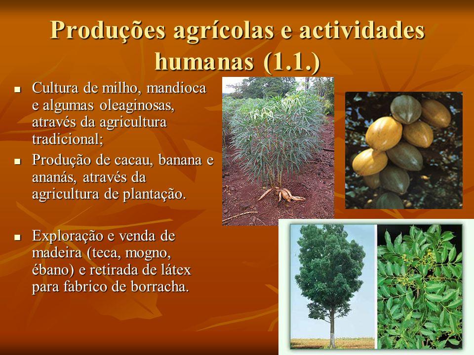 Produções agrícolas e actividades humanas (3.2.) Não há praticamente actividades humanas, devido ao solo permanecer gelado a maior parte do ano.
