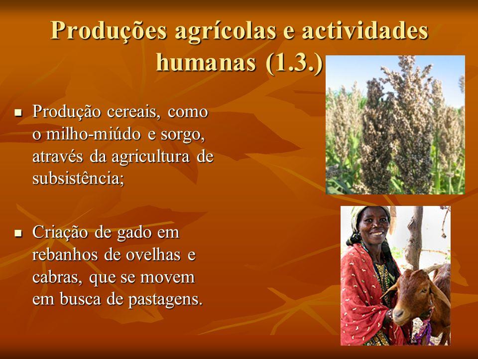 Produções agrícolas e actividades humanas (1.3.) Produção cereais, como o milho-miúdo e sorgo, através da agricultura de subsistência; Produção cereais, como o milho-miúdo e sorgo, através da agricultura de subsistência; Criação de gado em rebanhos de ovelhas e cabras, que se movem em busca de pastagens.