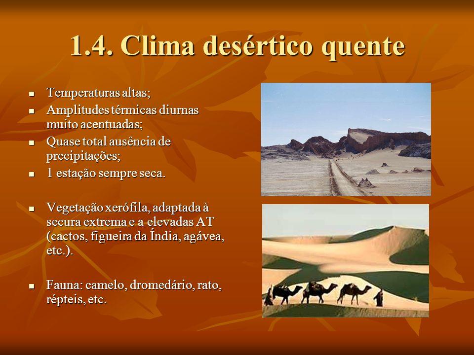 Produções agrícolas e actividades humanas (2.4.) Culturas de cereais (trigo), que ocupam vastas áreas – agricultura moderna mecanizada.