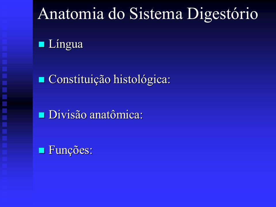 Anatomia do Sistema Digestório Língua Língua Constituição histológica: Constituição histológica: Divisão anatômica: Divisão anatômica: Funções: Funçõe