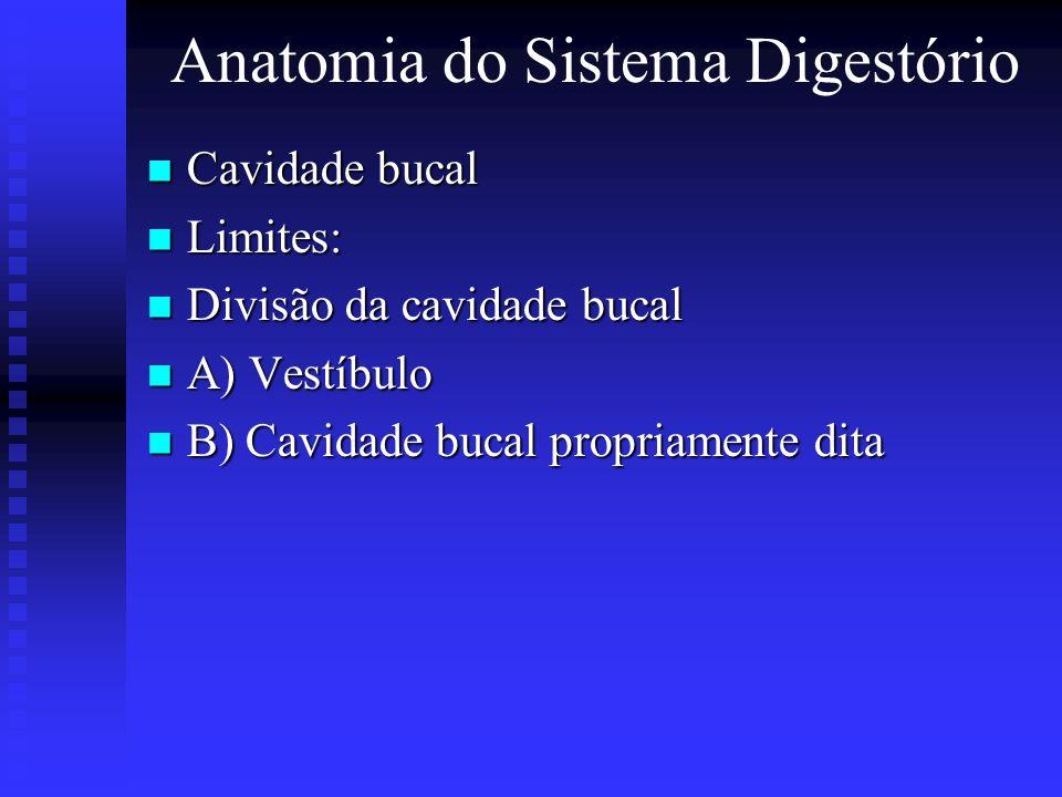 Anatomia do Sistema Digestório Cavidade bucal Cavidade bucal Limites: Limites: Divisão da cavidade bucal Divisão da cavidade bucal A) Vestíbulo A) Ves