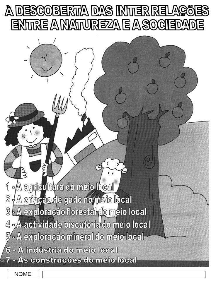 A AGRICULTURA DO MEIO LOCAL Identifico as tarefas utilizadas na agricultura… e o os produtos agrícolas.