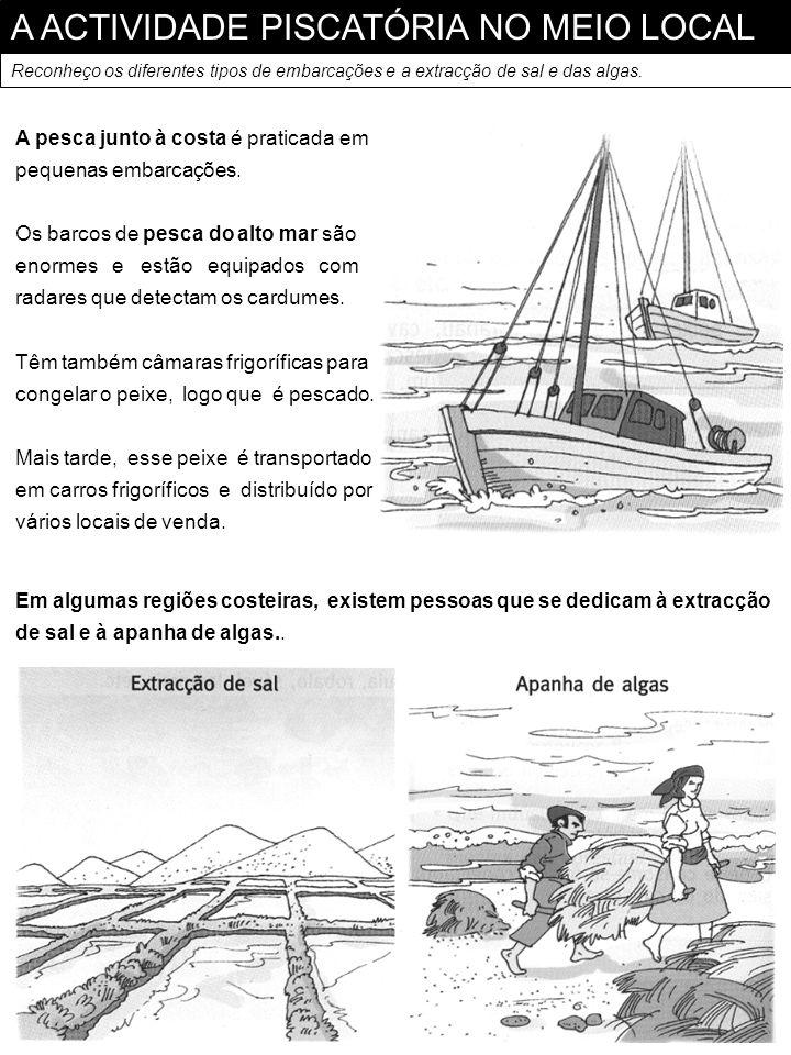 A ACTIVIDADE PISCATÓRIA NO MEIO LOCAL Reconheço os diferentes tipos de embarcações e a extracção de sal e das algas. A pesca junto à costa é praticada