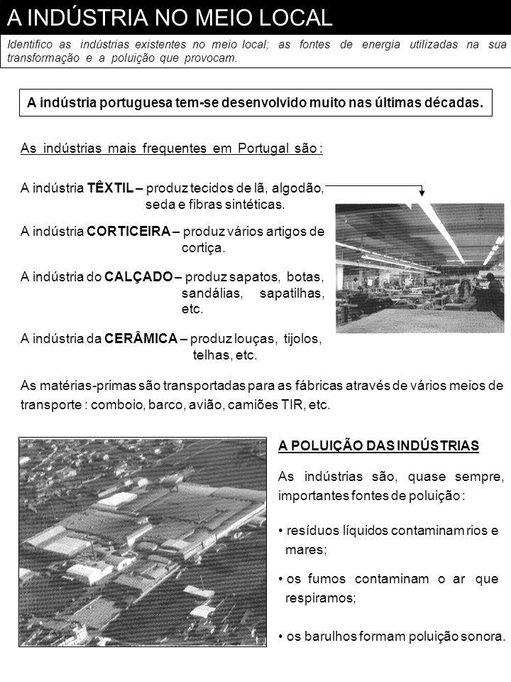 A INDÚSTRIA NO MEIO LOCAL Identifico as indústrias existentes no meio local; as fontes de energia utilizadas na sua transformação e a poluição que pro