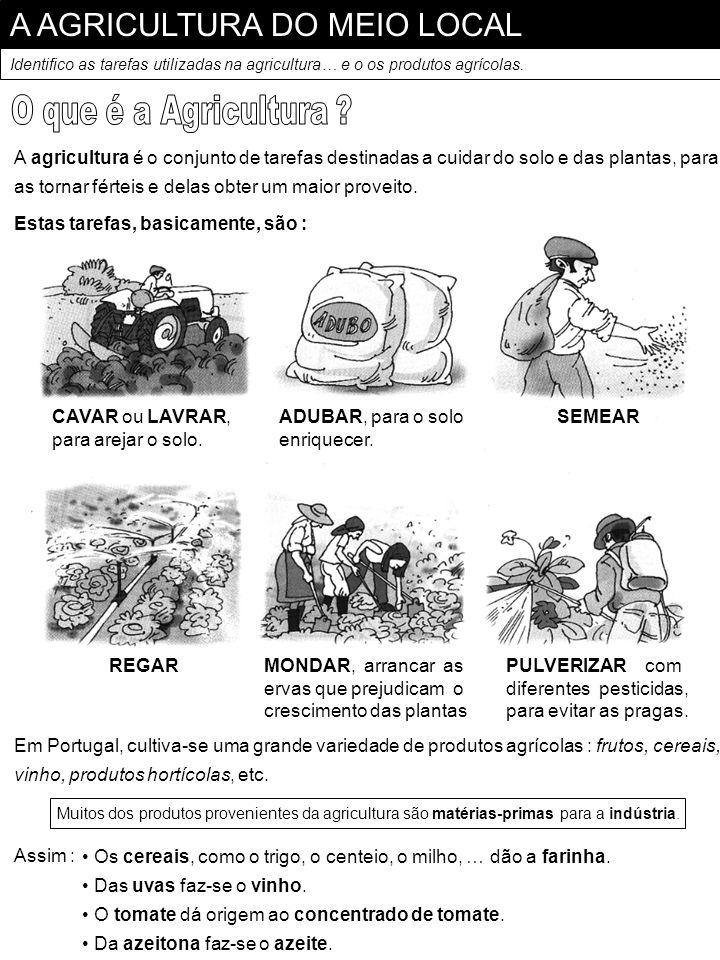 A AGRICULTURA DO MEIO LOCAL Identifico as tarefas utilizadas na agricultura… e o os produtos agrícolas. A agricultura é o conjunto de tarefas destinad