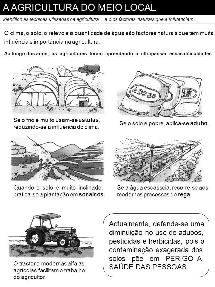 A AGRICULTURA DO MEIO LOCAL Identifico as técnicas utilizadas na agricultura… e o os factores naturais que a influenciam. O clima, o solo, o relevo e