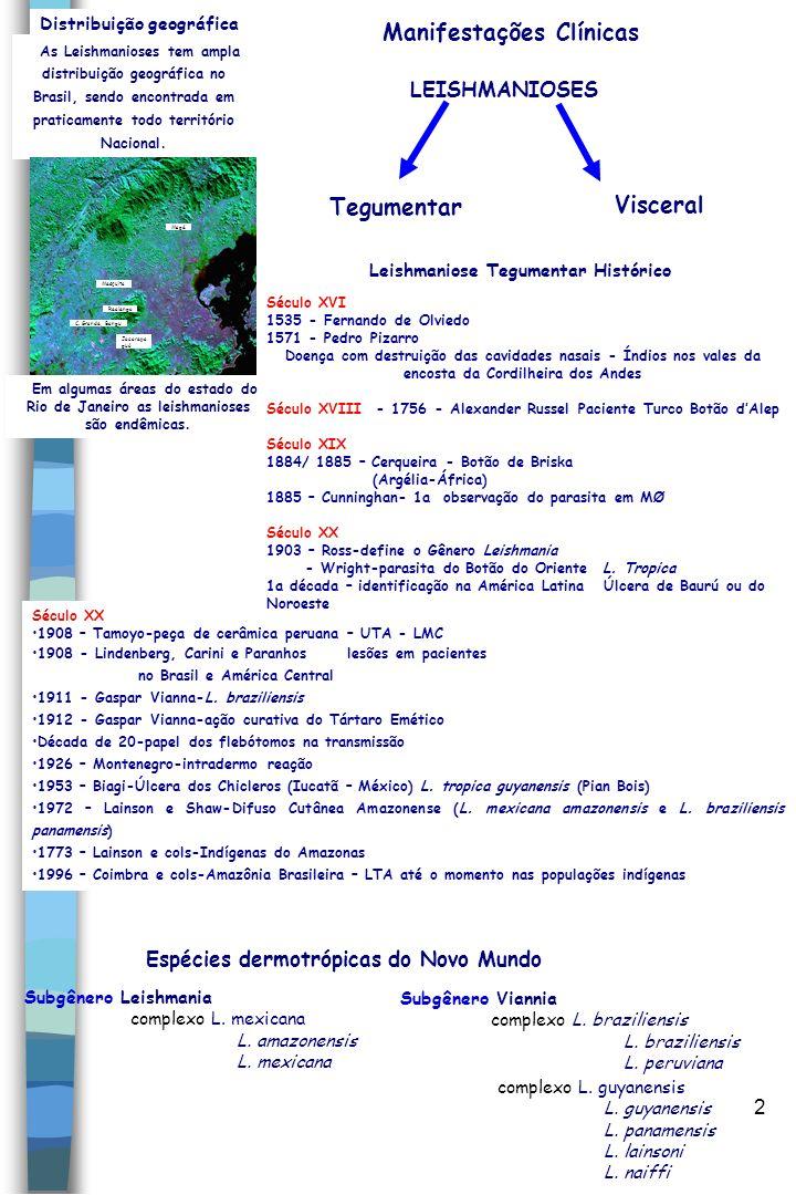 2 Distribuição geográfica As Leishmanioses tem ampla distribuição geográfica no Brasil, sendo encontrada em praticamente todo território Nacional. Mes