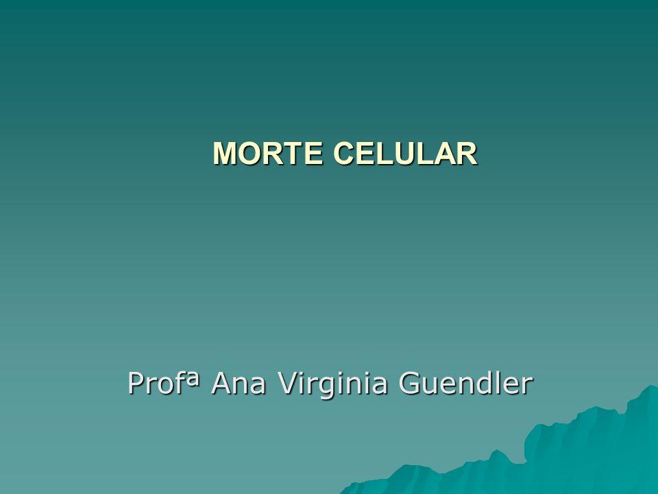 MORTE CELULAR Profª Ana Virginia Guendler