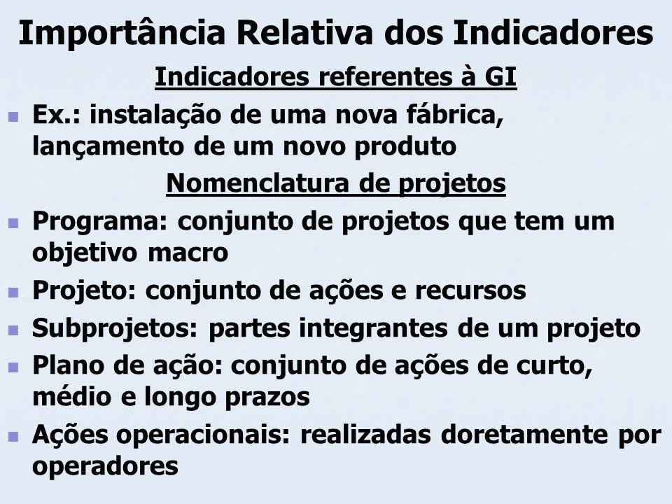 Importância Relativa dos Indicadores Indicadores referentes à GI Ex.: instalação de uma nova fábrica, lançamento de um novo produto Nomenclatura de pr