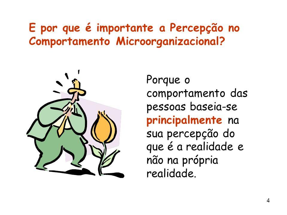 4 E por que é importante a Percepção no Comportamento Microorganizacional? Porque o comportamento das pessoas baseia-se principalmente na sua percepçã