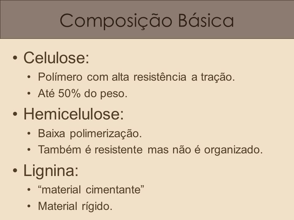 Composição Básica Celulose: Polímero com alta resistência a tração. Até 50% do peso. Hemicelulose: Baixa polimerização. Também é resistente mas não é