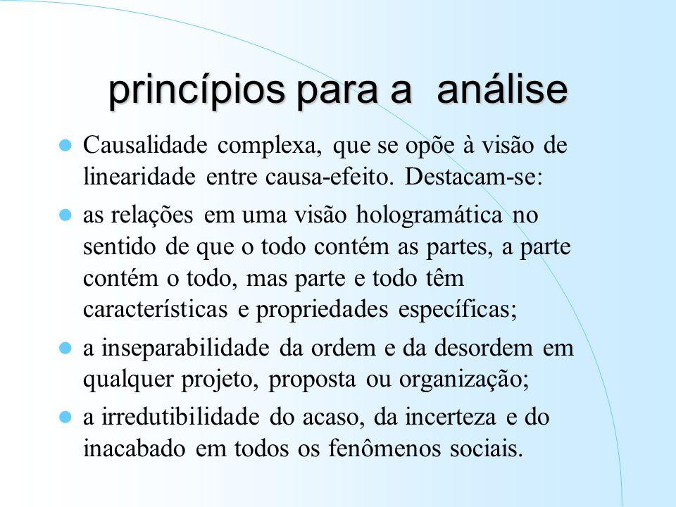 princípios para a análise Causalidade complexa, que se opõe à visão de linearidade entre causa-efeito.