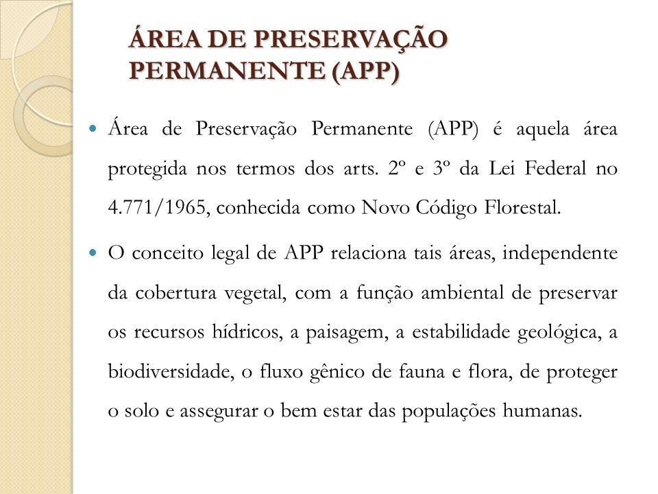 ÁREA DE PRESERVAÇÃO PERMANENTE (APP) Área de Preservação Permanente (APP) é aquela área protegida nos termos dos arts. 2º e 3º da Lei Federal no 4.771