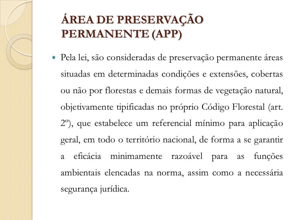 ÁREA DE PRESERVAÇÃO PERMANENTE (APP) Pela lei, são consideradas de preservação permanente áreas situadas em determinadas condições e extensões, cobert