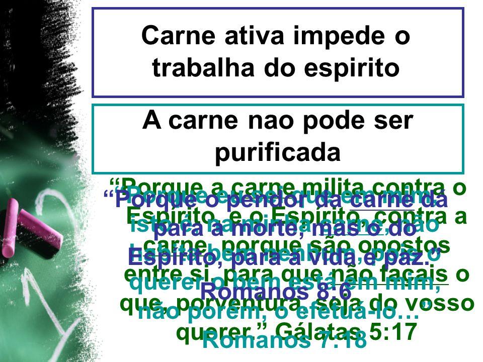 Porque a carne milita contra o Espírito, e o Espírito, contra a carne, porque são opostos entre si, para que não façais o que, porventura, seja do vos