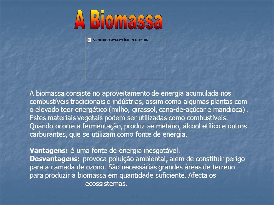 A biomassa consiste no aproveitamento de energia acumulada nos combustíveis tradicionais e indústrias, assim como algumas plantas com o elevado teor e