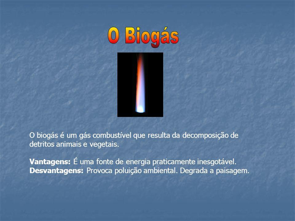 O biogás é um gás combustível que resulta da decomposição de detritos animais e vegetais. Vantagens: É uma fonte de energia praticamente inesgotável.
