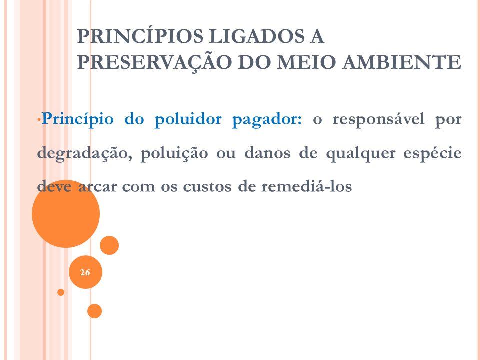 PRINCÍPIOS LIGADOS A PRESERVAÇÃO DO MEIO AMBIENTE Princípio do poluidor pagador: o responsável por degradação, poluição ou danos de qualquer espécie d