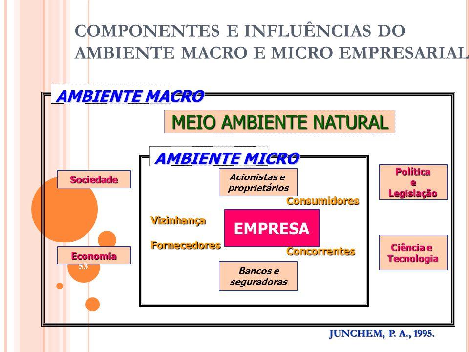 COMPONENTES E INFLUÊNCIAS DO AMBIENTE MACRO E MICRO EMPRESARIAL 53 EMPRESA MEIO AMBIENTE NATURAL Sociedade Economia PolíticaeLegislação Ciência e Tecn