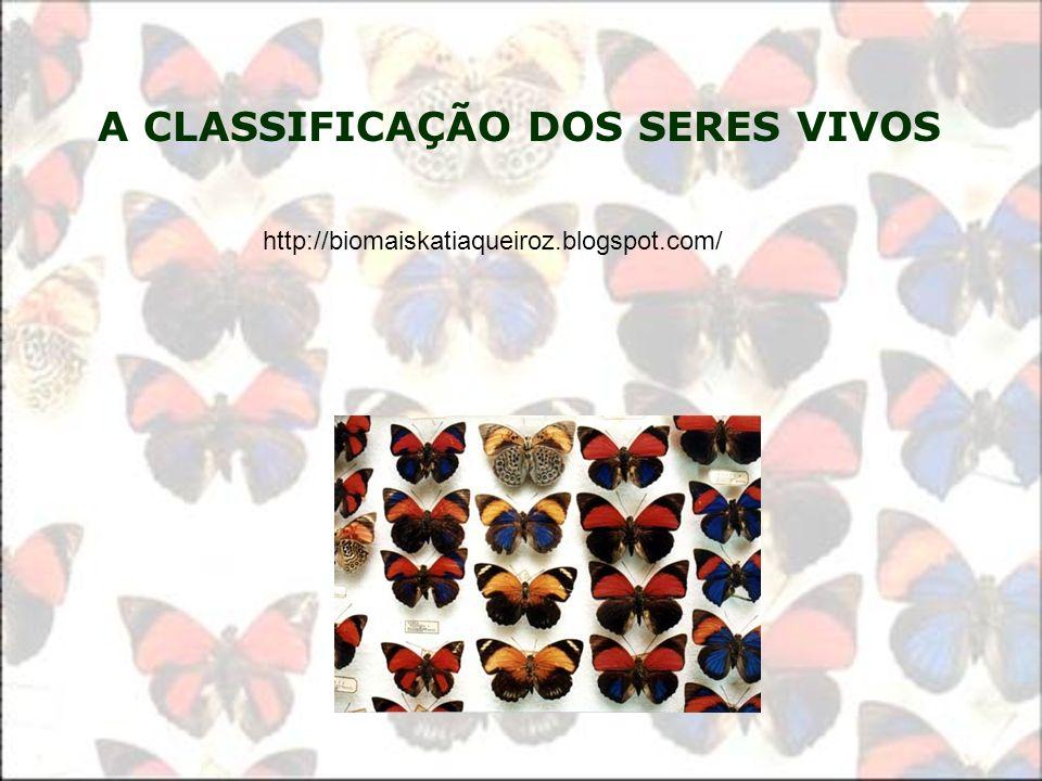 A CLASSIFICAÇÃO DOS SERES VIVOS http://biomaiskatiaqueiroz.blogspot.com/