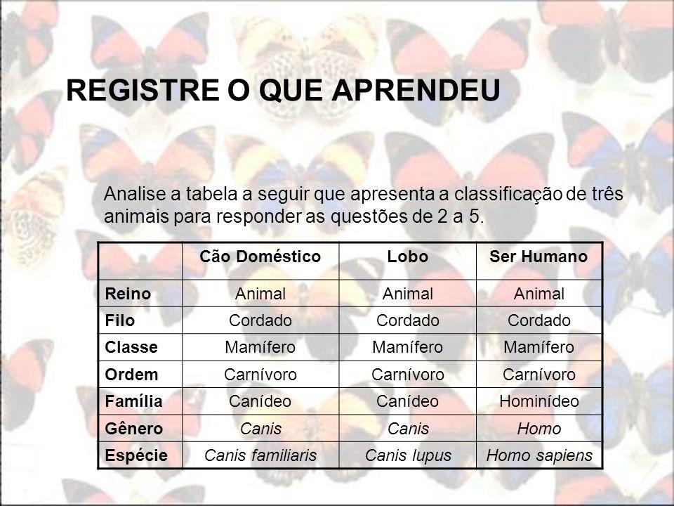 REGISTRE O QUE APRENDEU Analise a tabela a seguir que apresenta a classificação de três animais para responder as questões de 2 a 5. Cão DomésticoLobo