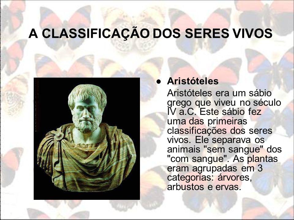 A CLASSIFICAÇÃO DOS SERES VIVOS Aristóteles Aristóteles era um sábio grego que viveu no século IV a.C. Este sábio fez uma das primeiras classificações