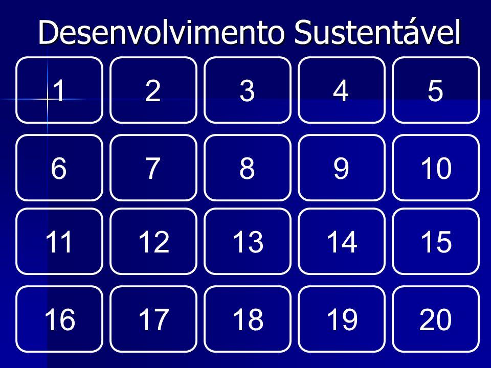 Desenvolvimento Sustentável 12345 678910 1112131415 1617181920