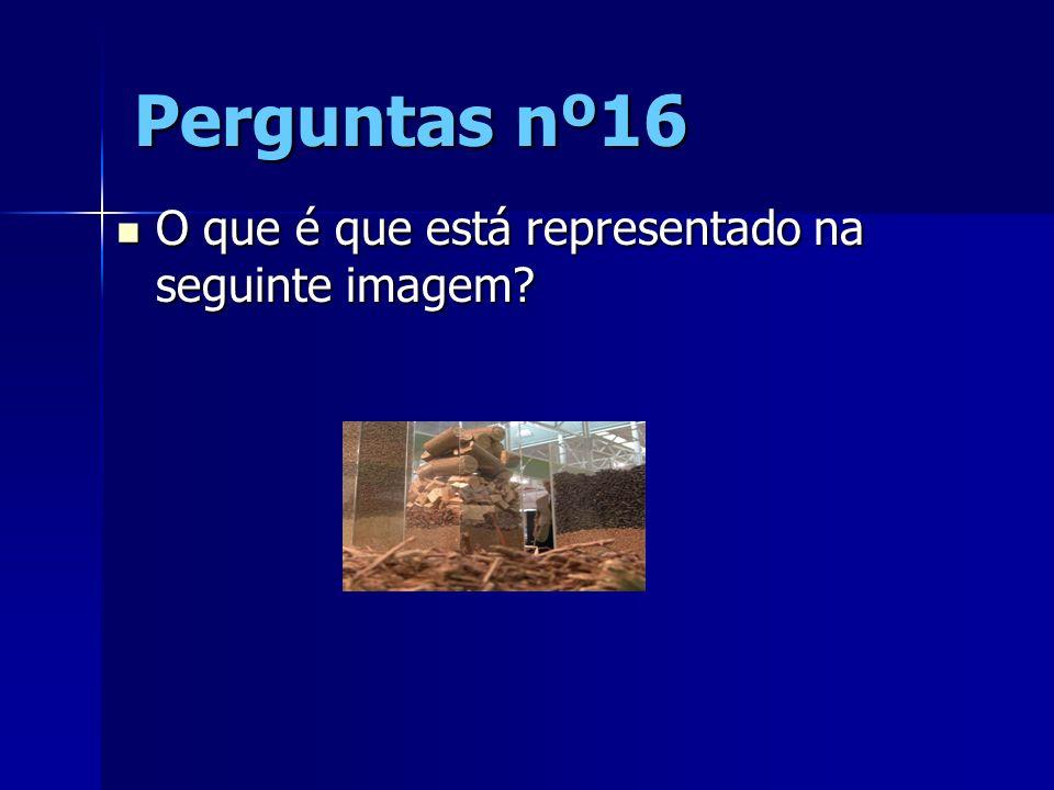 Perguntas nº16 O que é que está representado na seguinte imagem? O que é que está representado na seguinte imagem?