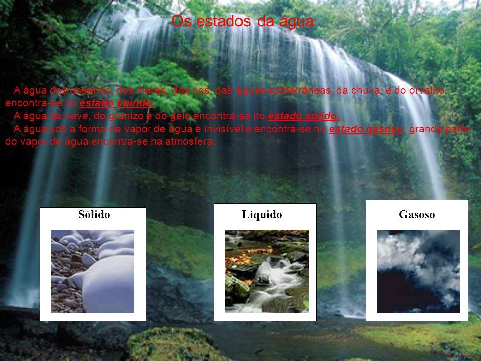 Os estados da água Sólido Líquido Gasoso A água dos oceanos, dos mares, dos rios, das águas subterrâneas, da chuva, e do orvalho encontra-se no estado