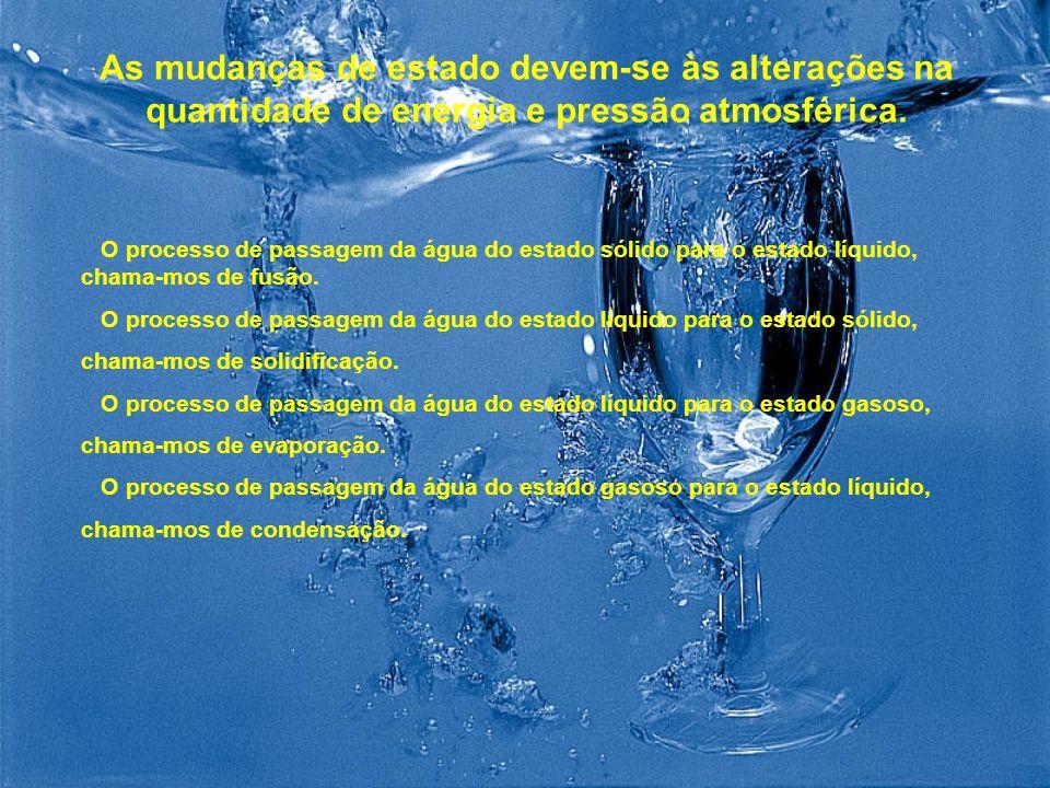 Impactos e Problemas na água A água contaminada ou poluída é prejudicial à saúde.