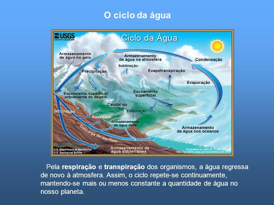 O ciclo da água Pela respiração e transpiração dos organismos, a água regressa de novo à atmosfera. Assim, o ciclo repete-se continuamente, mantendo-s