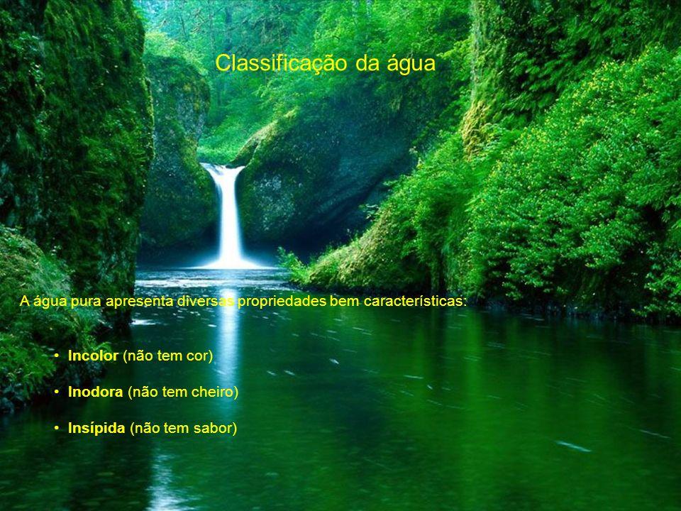 Classificação da água A água pura apresenta diversas propriedades bem características: Incolor (não tem cor) Inodora (não tem cheiro) Insípida (não te