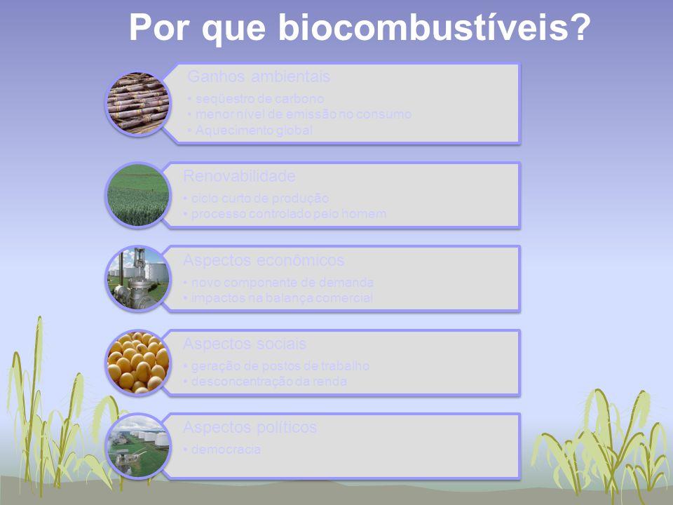 Por que biocombustíveis? Ganhos ambientais seqüestro de carbono menor nível de emissão no consumo Aquecimento global Renovabilidade ciclo curto de pro